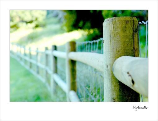 carmel_quail_lodge_4.jpg