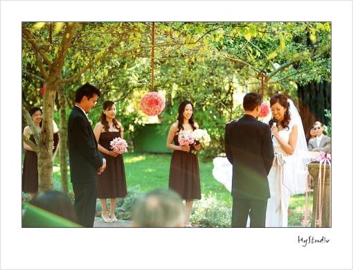 shakespeare_garden_wedding_20071116_10.jpg