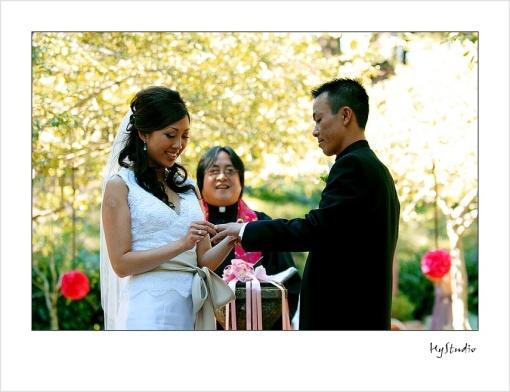 shakespeare_garden_wedding_20071116_14.jpg