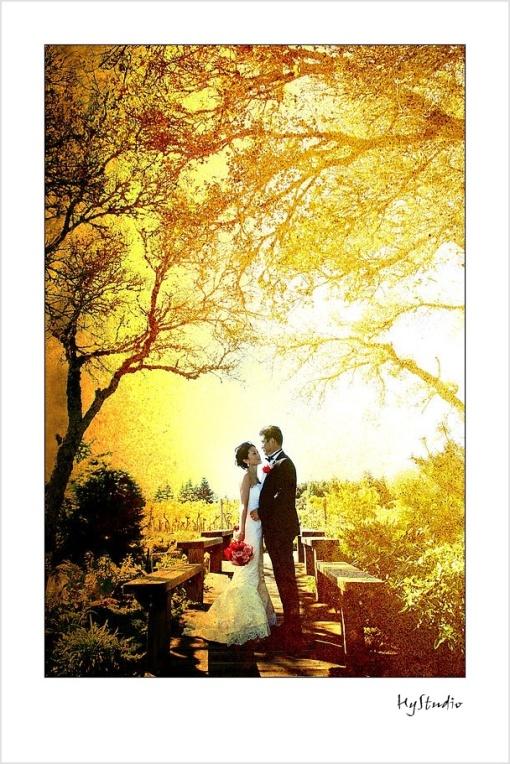 thomas_fogarty_winery_wedding_20071223_10.jpg