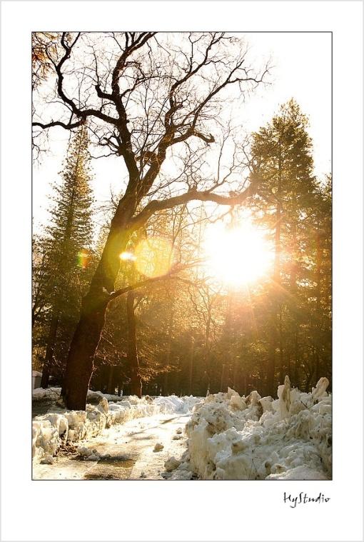 yosemite_wintercamping_10.jpg