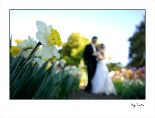 elizabeth_gamble_garden_palo_alto_wedding.jpg