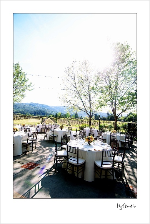 Harvest_Inn_Napa_Wedding_20091003_03