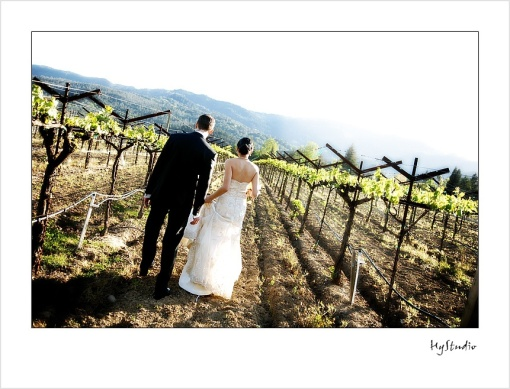 Harvest_Inn_Napa_Wedding_Glamour_Portraits_20091011_08