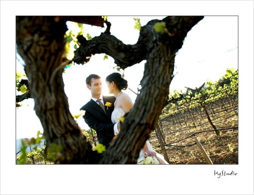 Harvest_Inn_Napa_Wedding_Glamour_Portraits_20091011_11