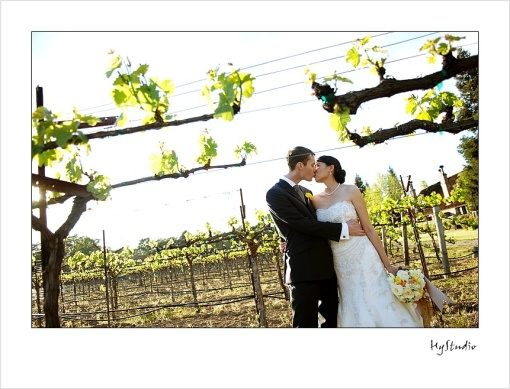 Harvest_Inn_Napa_Wedding_Glamour_Portraits_20091011_13
