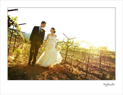 Harvest_Inn_Napa_Wedding_Glamour_Portraits_20091011_15